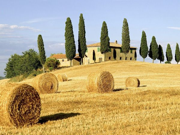The Best of Tuscany Day Trip- morning in Siena, lunch in Chianti winery, afternoon in San Gimignano, and evening stop in Pisa