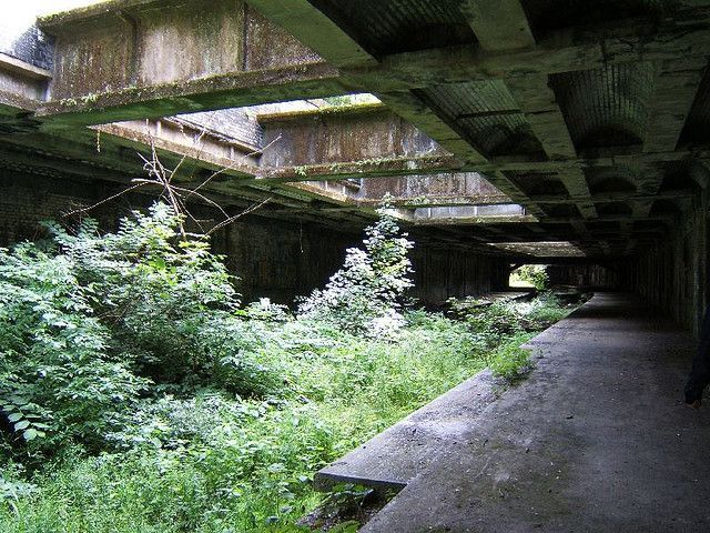 In a quiet corner of the Glasgow Botanic Gardens close to the main entrance lies an intriguing urban oddity – a slice of the city's hidden history in the form of an abandoned underground railway station built in Victorian times.