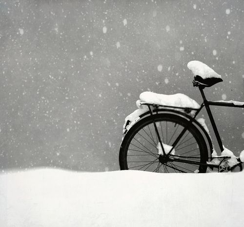 let it snow: Picture, Photos, Bicycles, Snow Bike, Winter Wonderland, Art, Black White, Photography