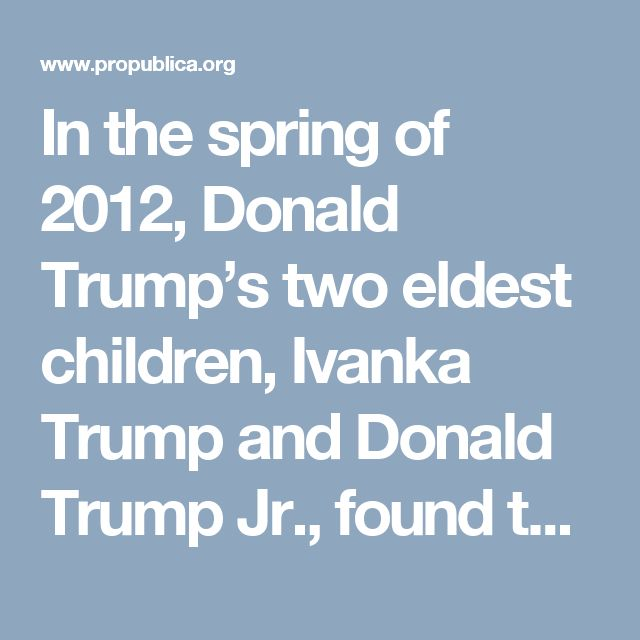 In the spring of 2012, Donald Trump's two eldest children, Ivanka Trump and Donald Trump Jr., found themselves in a precarious legal position. For two years, prosecutors in the Manhattan District Attorney's office had been building a criminal case against them for misleading prospective buyers of units in the Trump SoHo, a hotel and condo development that was failing to sell. Despite the best efforts of the siblings' defense team, the case had not gone away. An indictment seemed like a real…