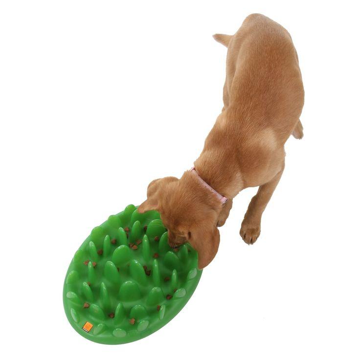 company of animals interactive feeder green amazoncouk pet supplies
