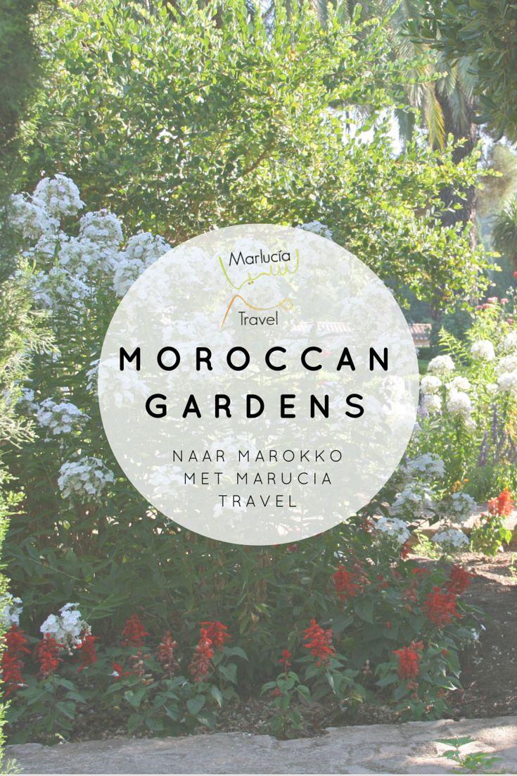 De (geheime) tuinen van Marokko zijn prachtig. The secret gardens of Morocco are wonderfull.