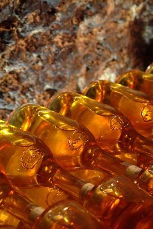 Photos of Tokaj Wine Region, Tokaj - Attraction Images - TripAdvisor Tokaj is liquid gold!!!  Yum!