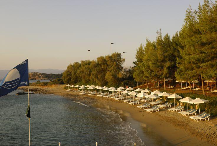 Our blue flag beach.. #CandiaPark #Crete