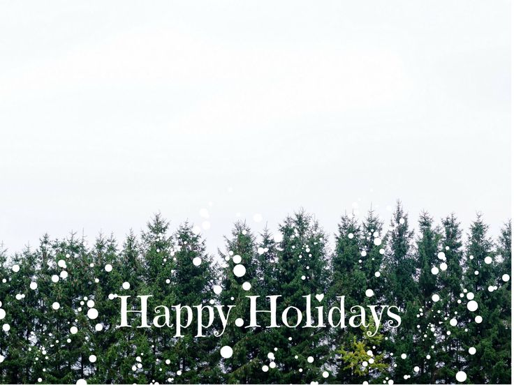 Happy Holidays Photo Greeting Card, 4x5 christmas cards, blank inside, merry…