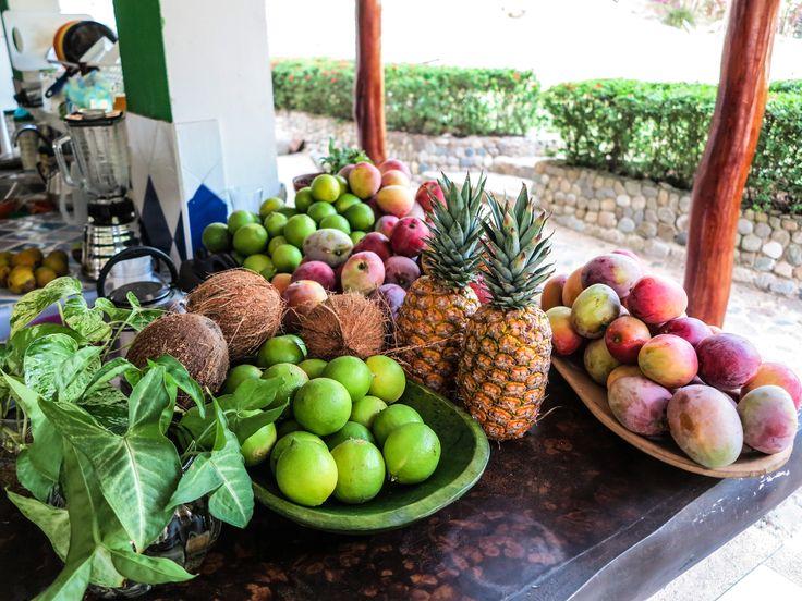 Frutas en cosecha en La Jorara