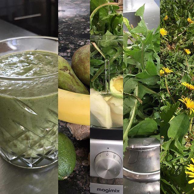 ✨zo vanuit je voortuin in je glas ✨    Pluk de onbeschadigde en onverkleurde jonge blaadjes van de #paardenbloem en verwerk deze in de #salade of in een #groenesmoothie   #leverreiniging #voorjaar #gezondrecept #eigenverzinsel #limoen #avocado #peer #banana #gember #dandelion #dandelionsmoothie #healthyfood #healthylife #heeljezelf #empoweryourself #yogainspiration @yogabymir