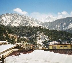 17 Places To Explore In McLeod Ganj