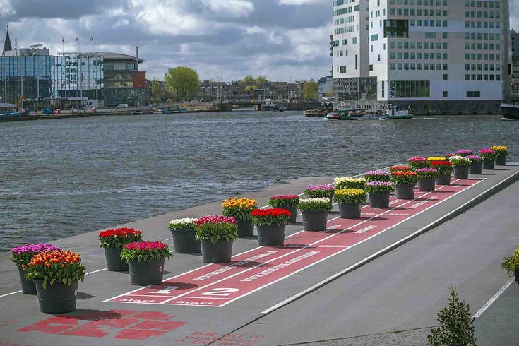 AMSTERDAM - De derde editie van het Tulp-Festival Amsterdam heeft bewoners enbezoekers van de hoofdstad vanaf april tot medio mei het plezier geschonken van ruim 550.000 bloeiende tulpen in 400 soorten, op meer dan 60 locaties in de hoofdstad.    Pasen viel in de Tulp-Festival-periode en dat leverde 100.000-den extra bezoekers op die 'en passant' optal