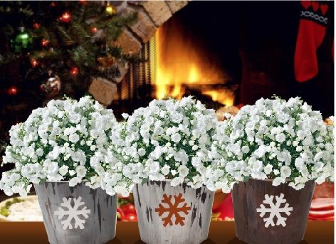25 best Flowers for Every Season images on Pinterest Christmas