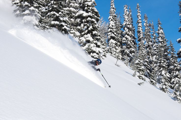 It is a common fallacy that in powder you should lean back and ride the tail of the ski. Though it is true that you want the tip of the ski to remain light and not get caught under too much snow, rather than thinking about leaning back, try instead to push the feet AND hands forward at the end of each turn to remain in a balanced position. (Precision Points presented by GMC) PC: Logan Swayze