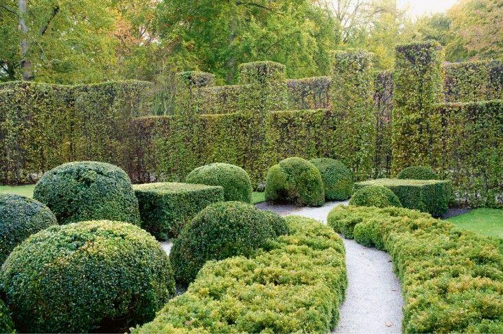 "Hornbeam hedge  boxwood in garden of Jacques Wirtz, Belgium (Wirtz International). From ""Contemporary Designers' Own Gardens"" by Robin Baker via gardenista."