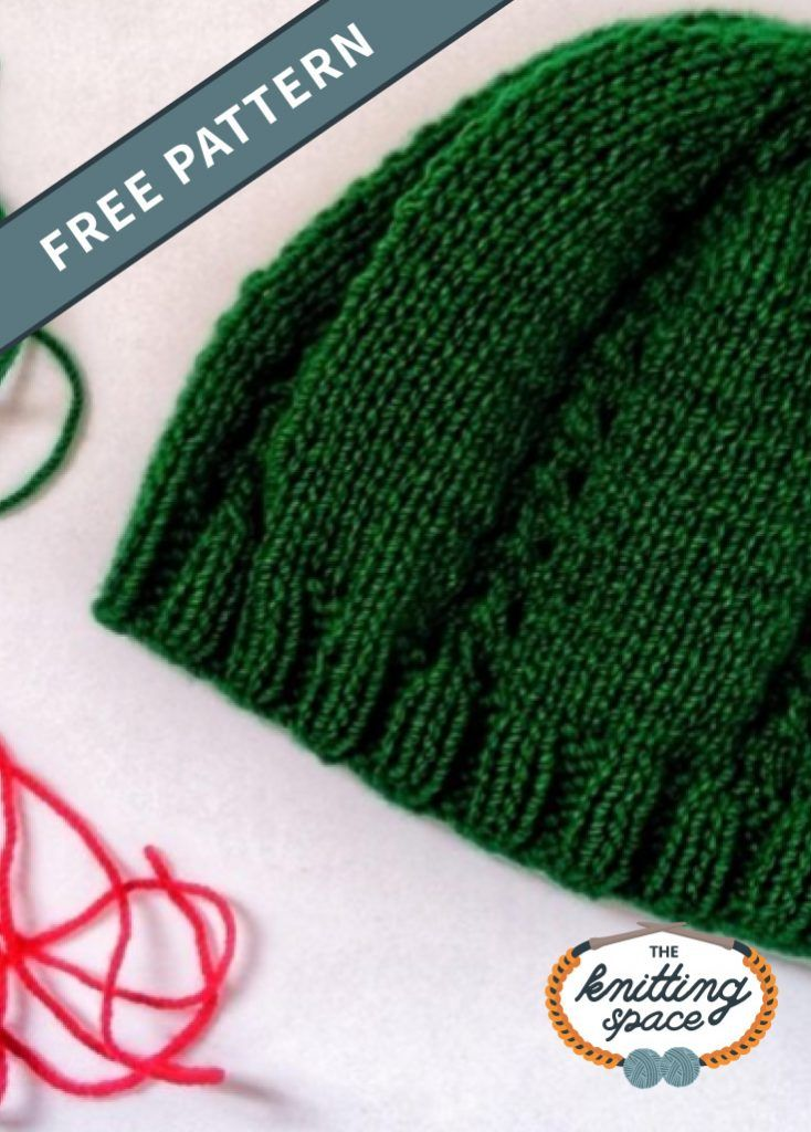 Verdant Double-Hole Knitted Hat [FREE Knitting Pattern ...