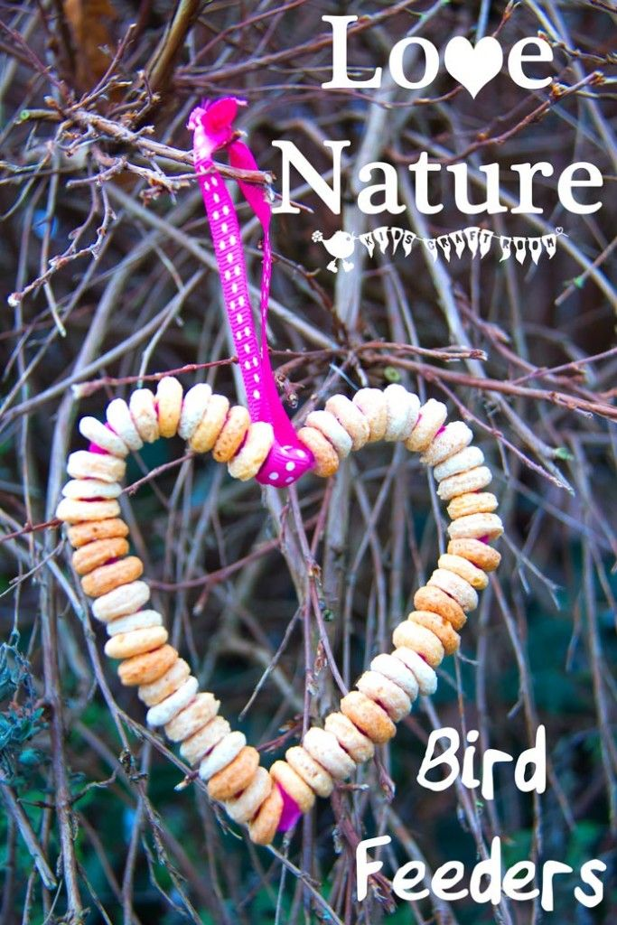 Enjoy your local wild birds and encourage a love of Nature with this heart shaped DIY bird feeder craft for kids