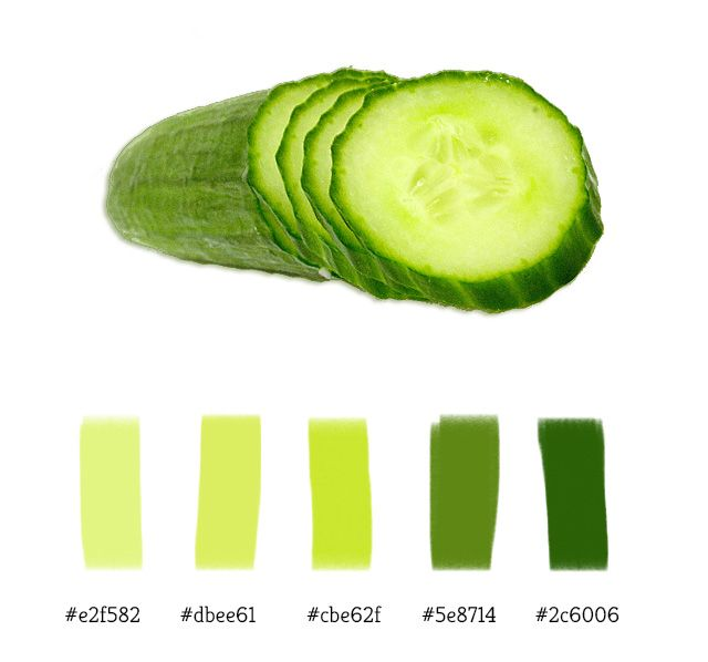 Cucumber Color Palette Kitchen Ideas Pinterest