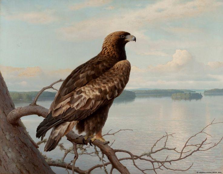 Kansallisgalleria - Taidekokoelmat - Kotka järven rannalla
