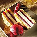 Fraîcheur Club Biscuit Citron - Patiseb