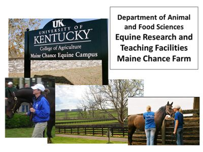 Equine Research, Education, and Outreach