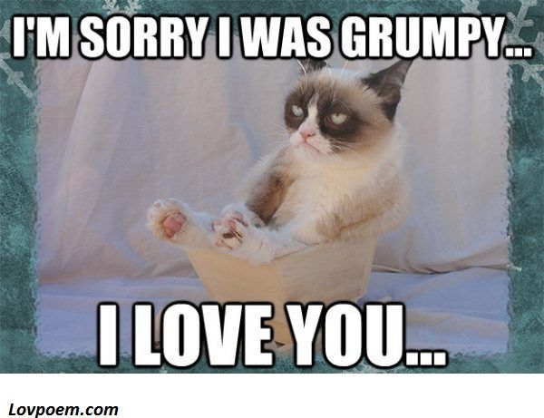 70 Memes About Being Sorry For Him Or Her Sweet Memes Sweet Memes Sorry Memes Grumpy Cat Meme