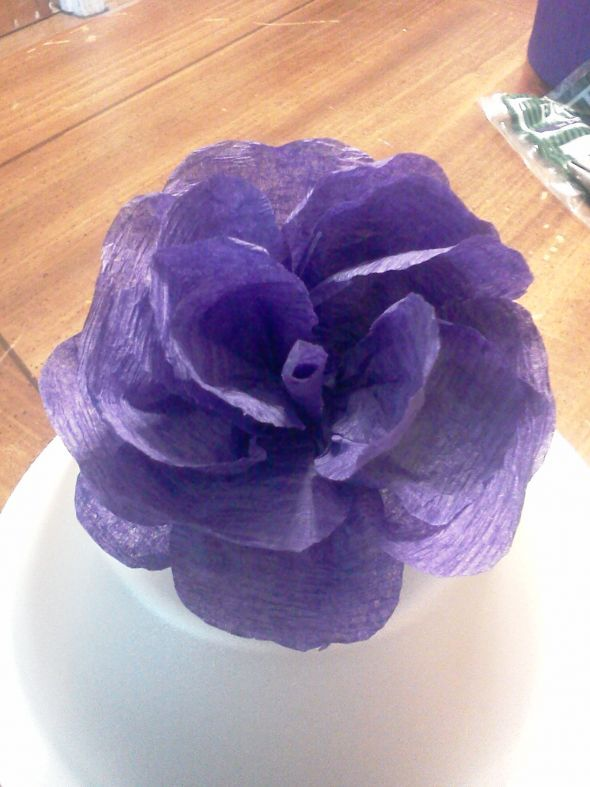 Crepe paper flowers (streamer paper) Heavy photos | Weddingbee DIY Projects