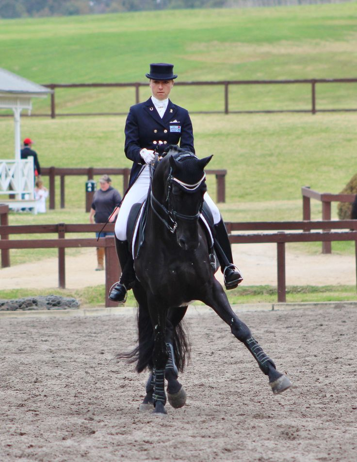 NSW Dressage Championships Warmup for the Intermediare freestyle