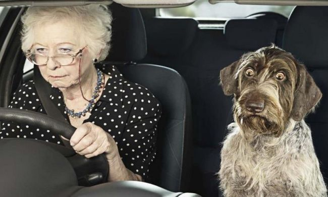 'I once stopped an old lady for speeding on the highway...'