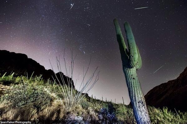 Meteoriti Orionidi, pioggia di Stelle cadenti: osservazione in Diretta Streaming.