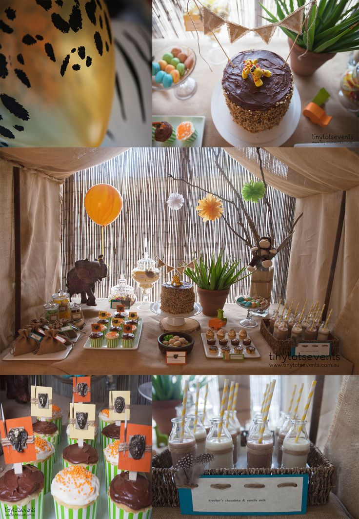Boys Safari Party - Tiny Tots Events - Melbourne's Little People Parties specialist
