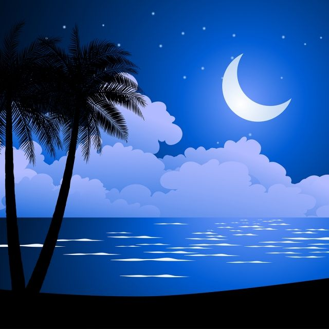 Beautiful Blue Night At Beach In 2020 Ocean Backgrounds Cartoon Starfish Nature Background Images