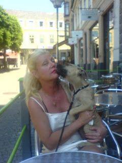Pitbull Författare Barbro Bruhn: mycket bra skk att registrera katter nu i er hundk...