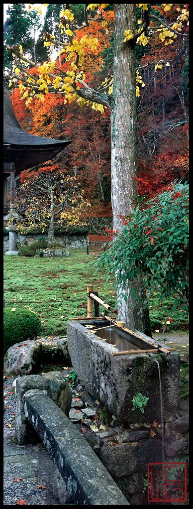 Hoshun-In Zen Garden ~ Kyoto, Japan • photo: William Corey Gallery