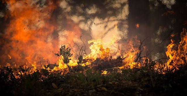 Accidentaccio: Incendi e Ricordi