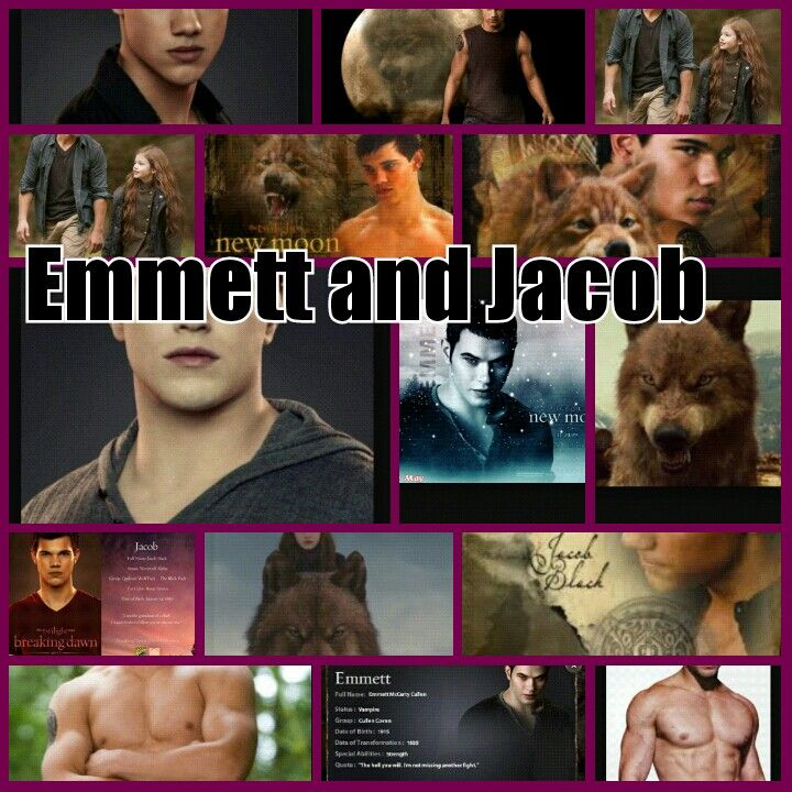Emmett and jacob from twilight