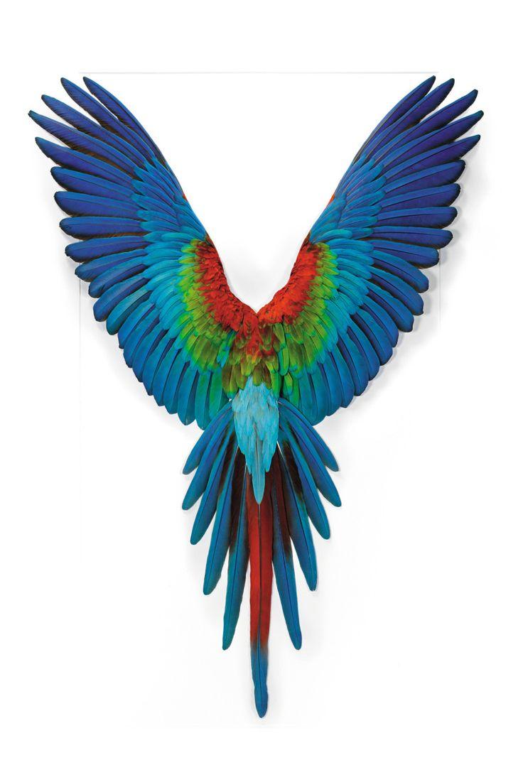 چسب پرنده پرنده ای