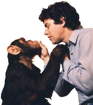 I miss this show: Jim Cronin, founder of Monkey World Ape Rescue Centre, England...the happiest place on earth...full of rescued animals who get to be free & happy & cared for for the rest of their lives. Alison Cronin continues his legacy with true love & passion.