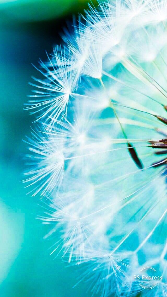 Wallpaper Photography Blue Fondo De Pantalla Cool Fondos De Pantalla Tumblr Fondos De Pantalla