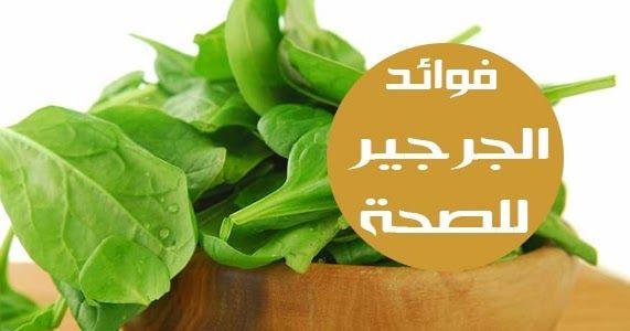 فوائد الجرجير لصحة الجسم كل منا يعرف فوائد الخضر الورقية الخضراء للصحة واحد من هذه الخضر الخضراء الأقل شهرة هو الجرجير لديه قيمة غيذاي Herbs Vegetables Celery