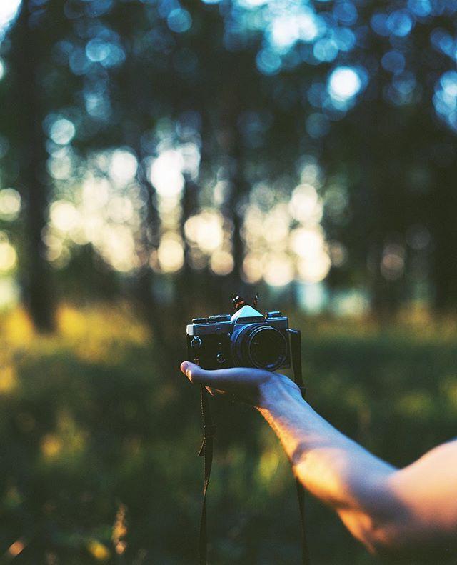 I love everything about this shoot, it was hard to catch the moment like this with medium format. #filmisnotdead #film #120 #6x7 #analog #ishootfilm #analogphotography #analoguevibes #shootfilm #пленка #pentax #pentax67 #mediumformat #takumar #kodak #ektar100 #butterfly