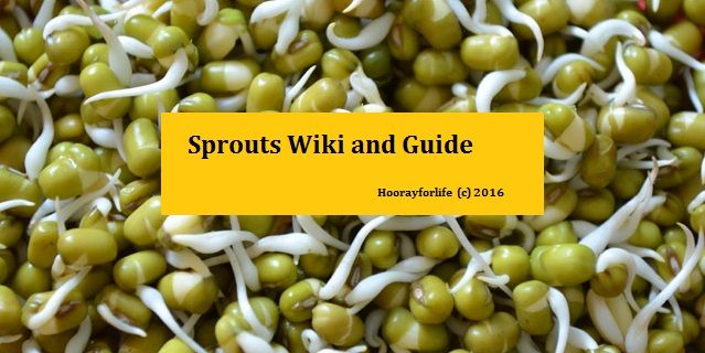Sprouts Wiki and Guide
