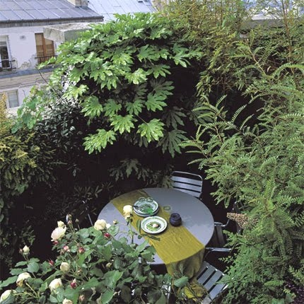 perfect hideaway courtyard garden.