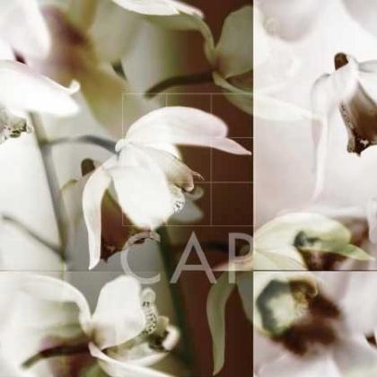 "Piece: ""Cymbidium Orchid I"".  Artist:  Jane-Ann Butler.  Size:  36"" x 36"".   Presentation:  canvas."