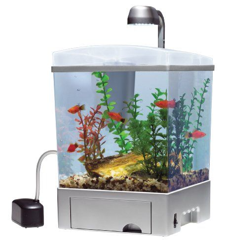 1000 images about modern contemporary fish tanks on for Modern fish tanks