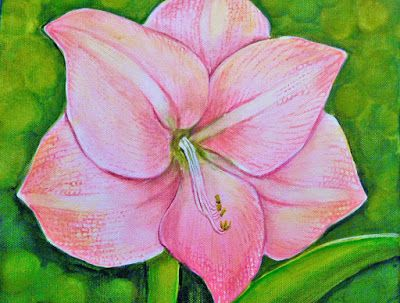 My Illustrations: Amaryllis called apple blossom I painted some mont...