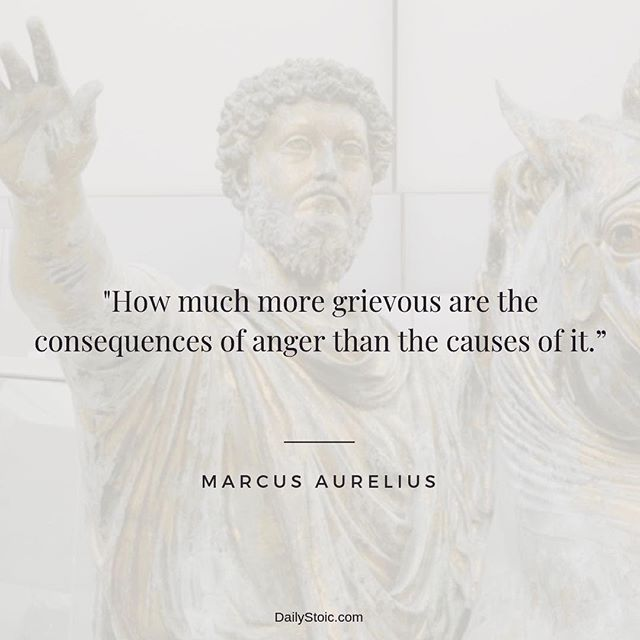 Daily Stoic Stoic Wisdom For Everyday Life Writing Quotes Inspirational Stoicism Quotes Inspirational Quotes Motivation