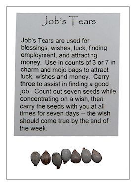 Dried Herb - Job's Tears - Pack of 7 for Spells Rituals | The Magickal Cat Online Pagan/Wiccan Shop