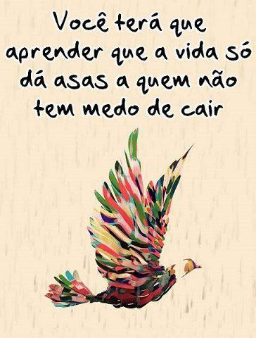 """""""You'll have to learn that life only gives wings to those not afraid to fall"""". quote"""