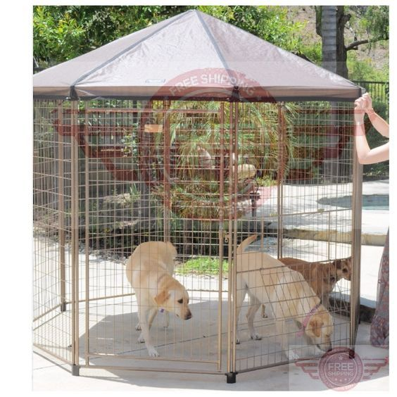 8 Backyard Ideas To Delight Your Dog: 1000+ Ideas About Dog Kennel Panels On Pinterest