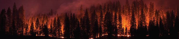 Some of the things you must know about service restoration in the aftermath of #forestfires. https://www.fortisbc.com/MediaCentre/Blog/Pages/20170721-7-things-to-know-about-service-restoration-after-forest-fires.aspx