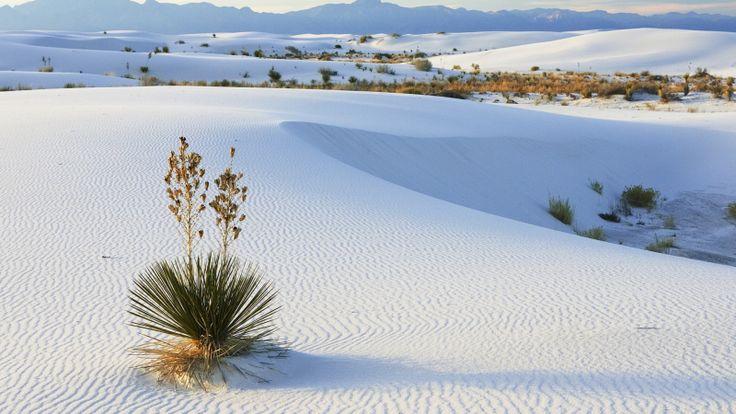desierto-natural-con-arenas-blancas-Nature-Desert