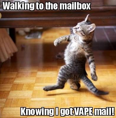 Meme Maker - Walking to the mailbox Knowing I got VAPE mail!